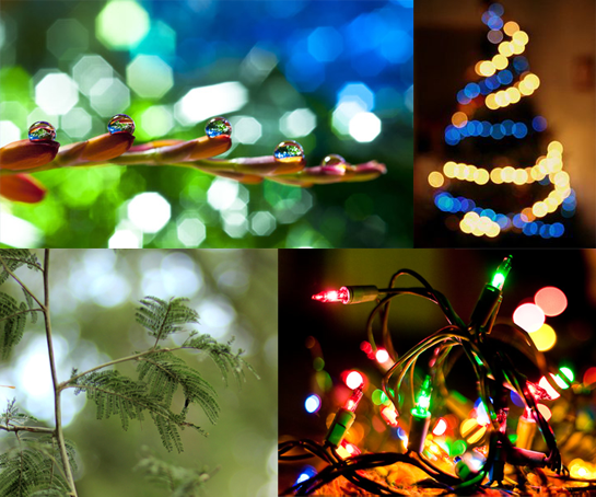 Simple Image Manipulations (Example 1: Simulating the Bokeh Effect